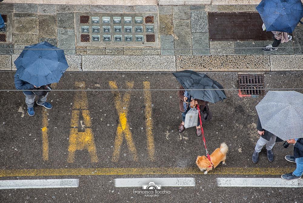Persone Ombrelli Parma